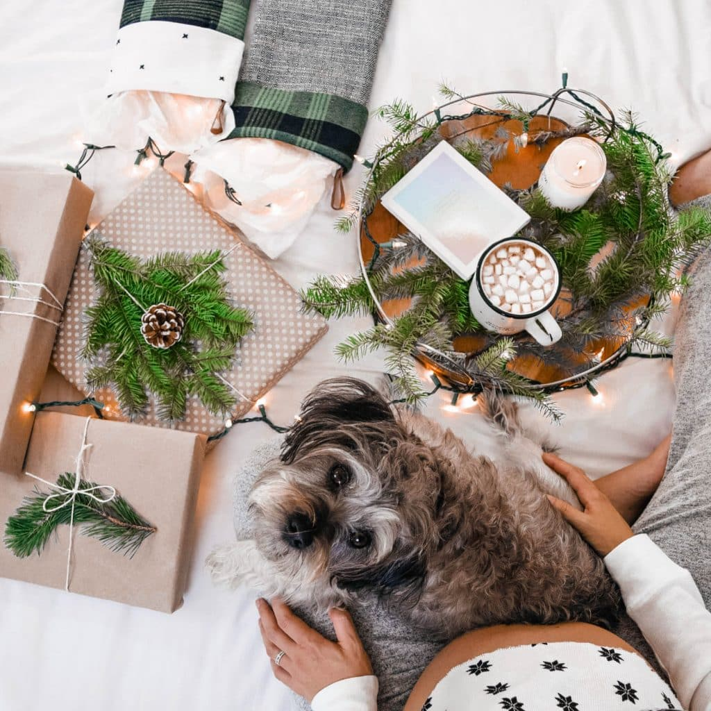 10 Things I Loved In December [+ 2018!], millennial blogger monthly round up, loving lately by 20 something blogger, pregnancy blog, pregnant blogger end of year recap, annual goals, #millennialblogger, #pregnantblogger, #thignsilove, #monthlyroundup, #lovinglately