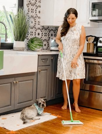 8 Tips For A Happier & Healthier Summer With Your Pet, easy dog hair removal and cleaning to fight shedding with a miniature schnauzer on hardwood floors,summer puppys and animals with friends having fun in the water or at the beach, keeping your house clean with pets like dogs and cats and kids, how to remove pet hair from dogs and cats quickly, tips for keeping house clean with pets and kids, #doglife, #petlife, #cleanhouse, #summercleaning, #summershedding, #dogmom