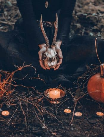 The Ultimate List of Halloween Movies [80+ from Scary to Not-So-Scary!], halloween movies to watch, #halloweenmovies, spooky movies, not so scary halloween movies, halloween movies for kids, #halloween, #halloweenideas, #scaryhalloweenmovies