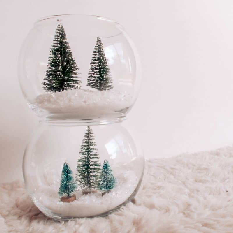 DIY Christmas Tree Farm Terrarium | Dollar Tree Holiday Hack